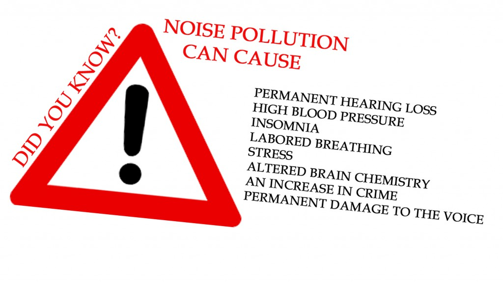 NOISE POLLUTION DID YOU KNOW